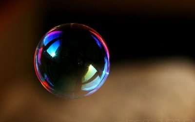 Dans la bulle euphorisante
